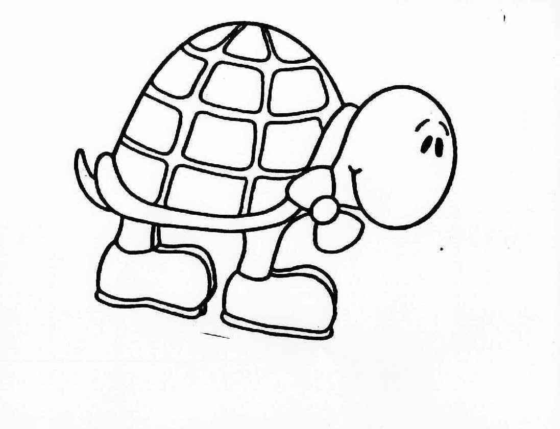 besides  further  in addition  also  likewise  moreover  likewise  further  as well  furthermore . on printable coloring pages turtle