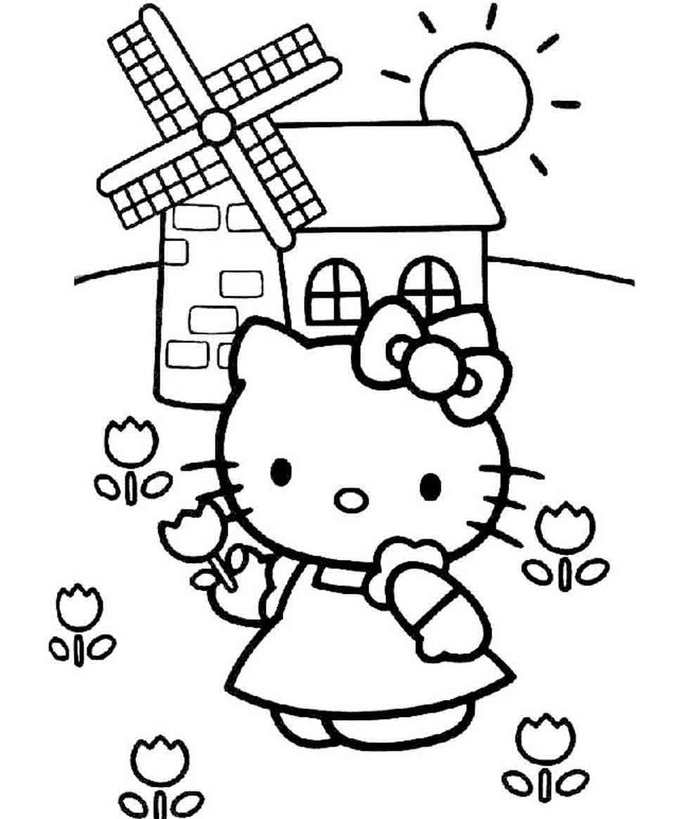 Hello Kitty no campo